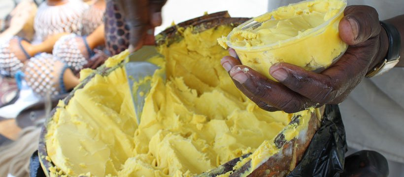 Shop Shea Butter | Africa Shea Oil | Africa Imports | Africa Imports