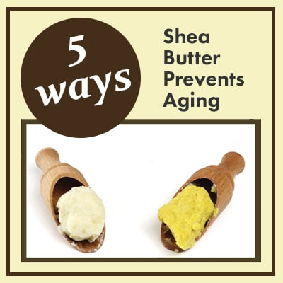 5 ways shea butter prevents aging