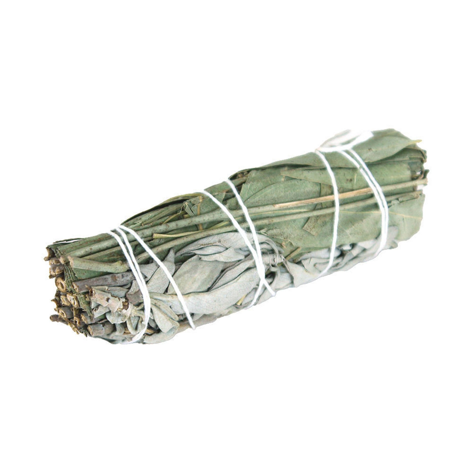 Picture of White Sage & Eucalyptus Smudge Stick