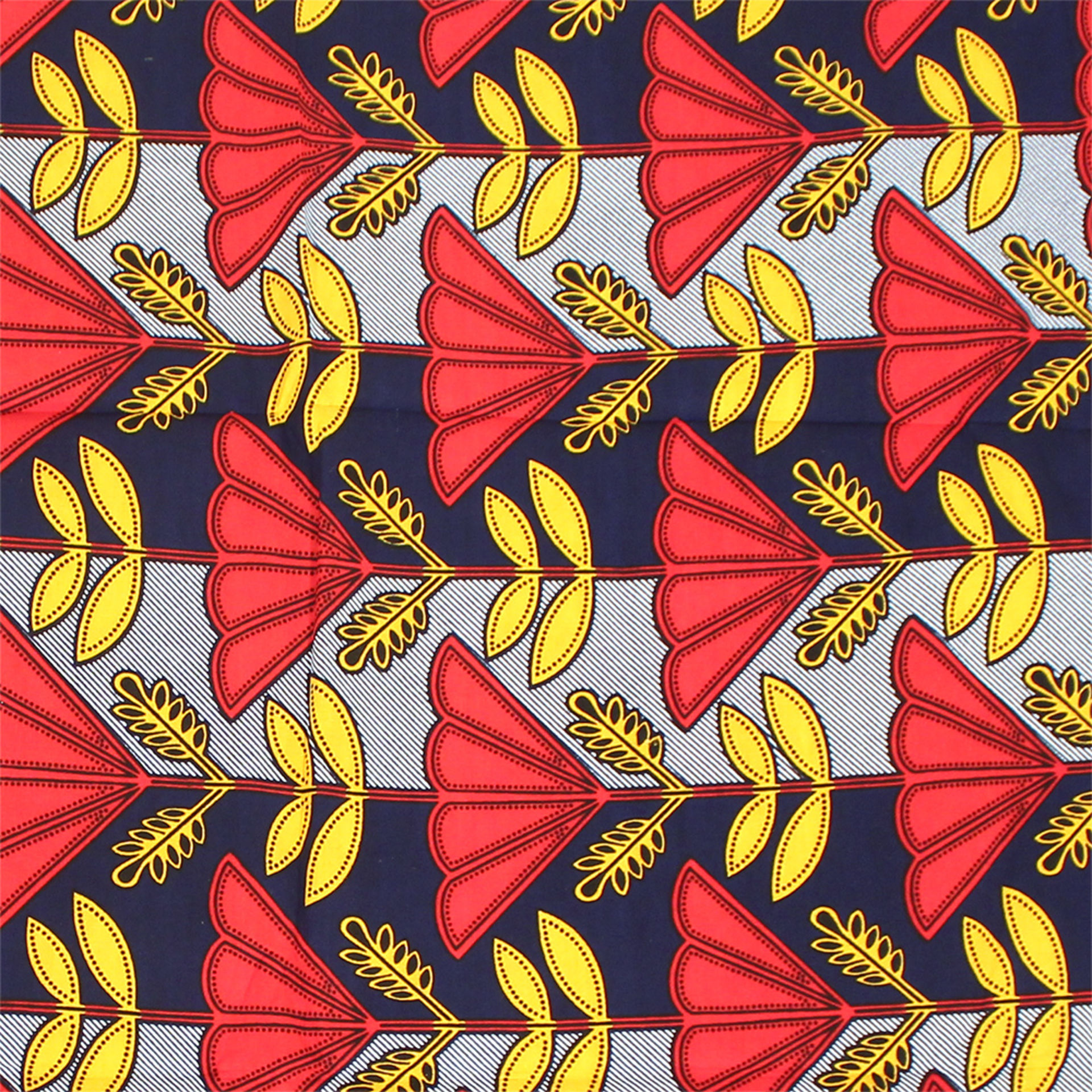 Picture of African Roots Print Fabric