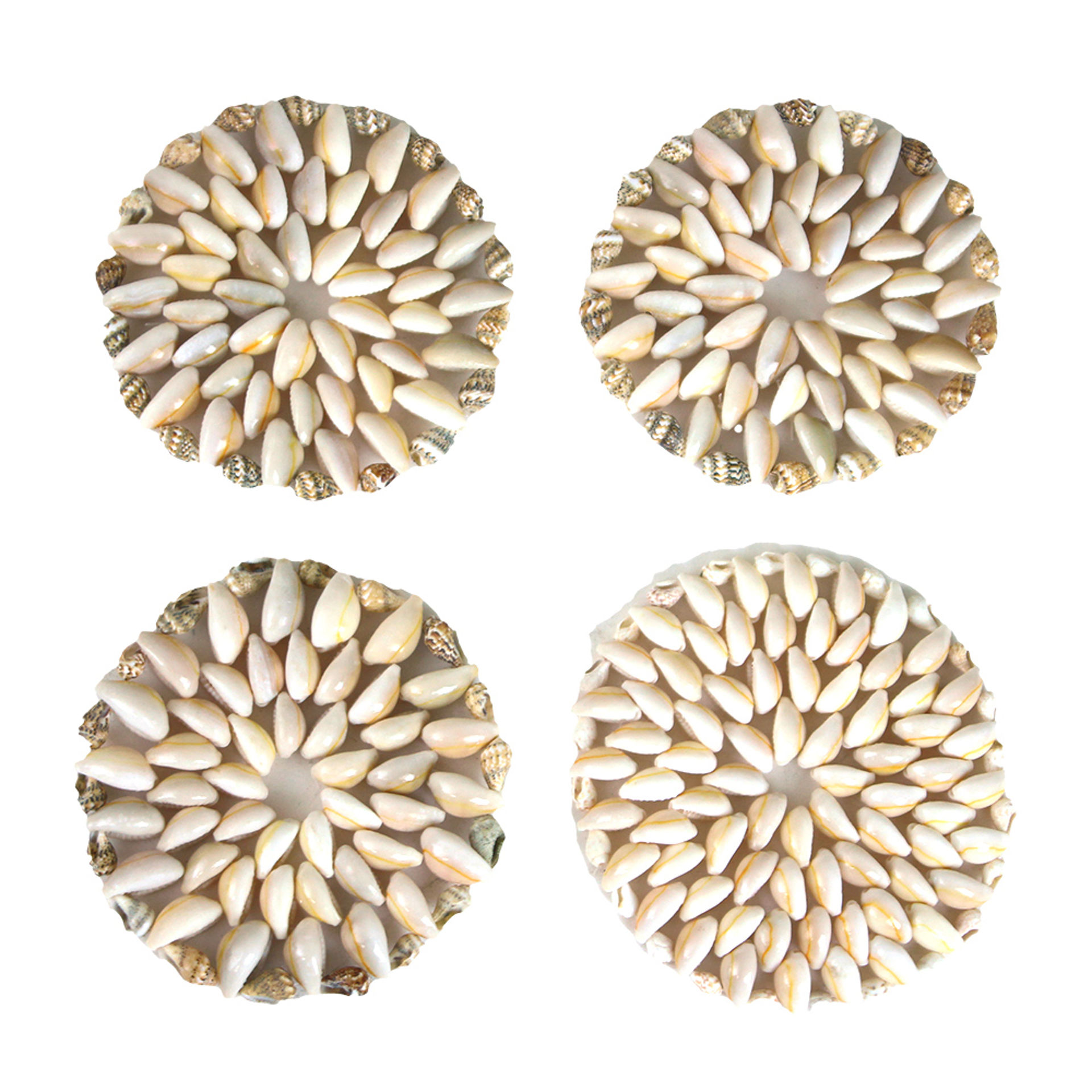 Picture of Set Of 4 Cowrie Shell Coasters - SM