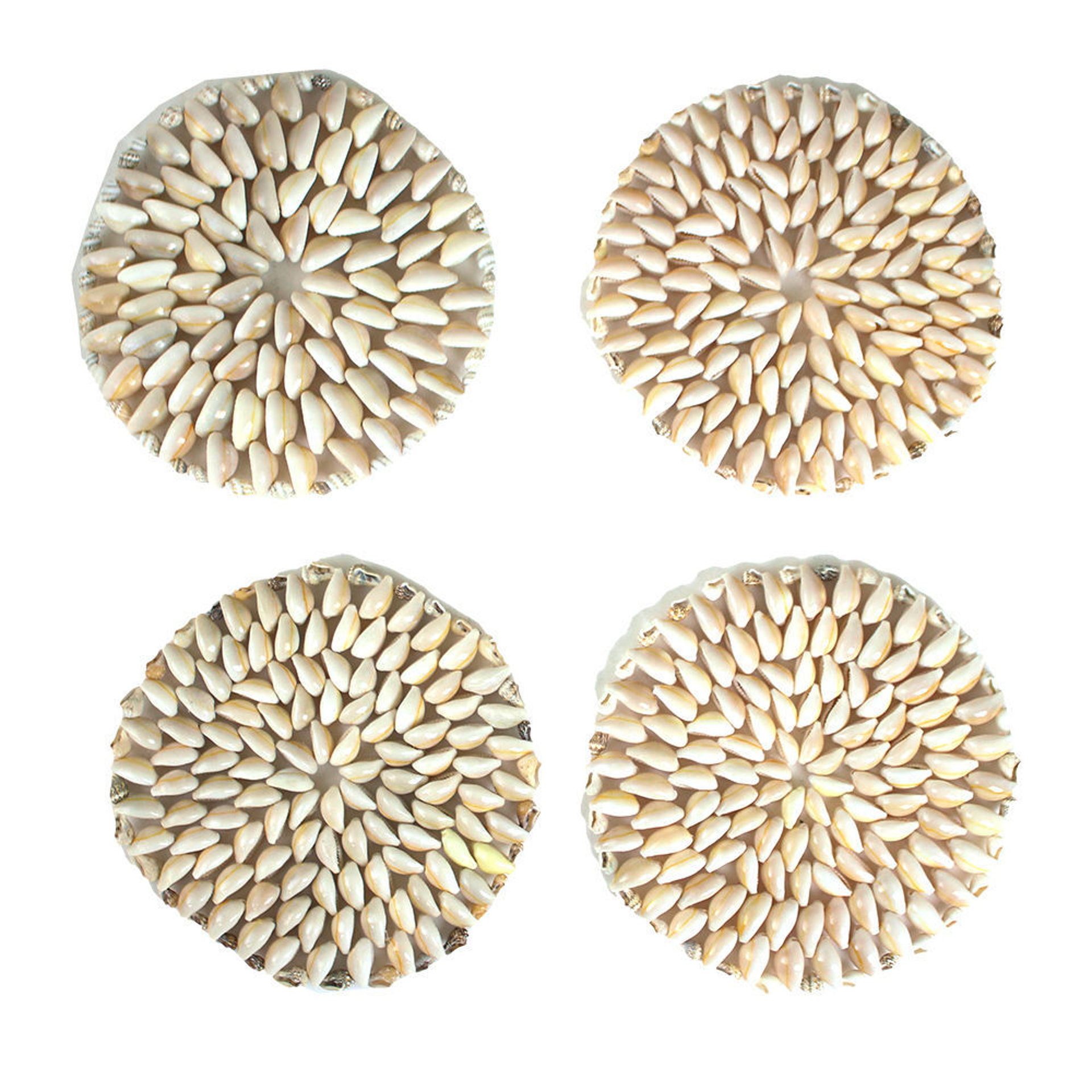 Picture of Set Of 4 Cowrie Shell Coasters - LG