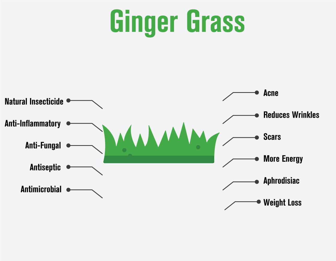 100917 gingergrass infographic